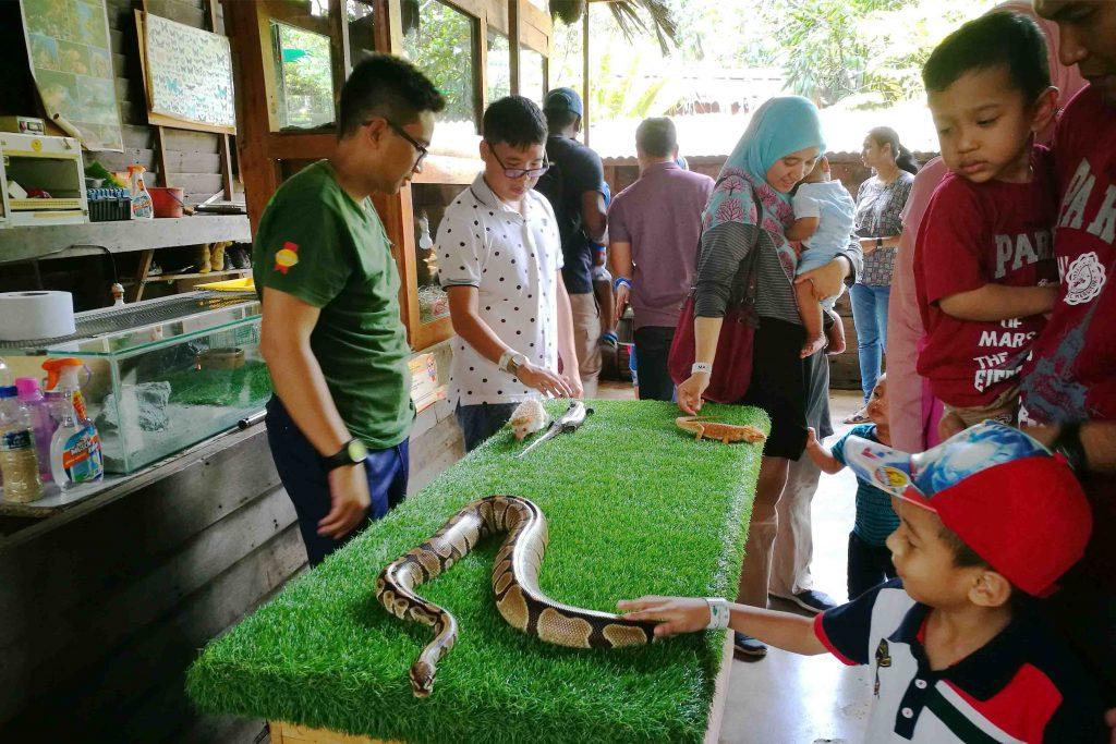 Farm In The City Percutian Menarik Area Selangor