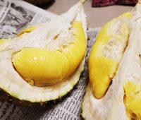 Durian Musang King Sedap dan Berbaloi Beli